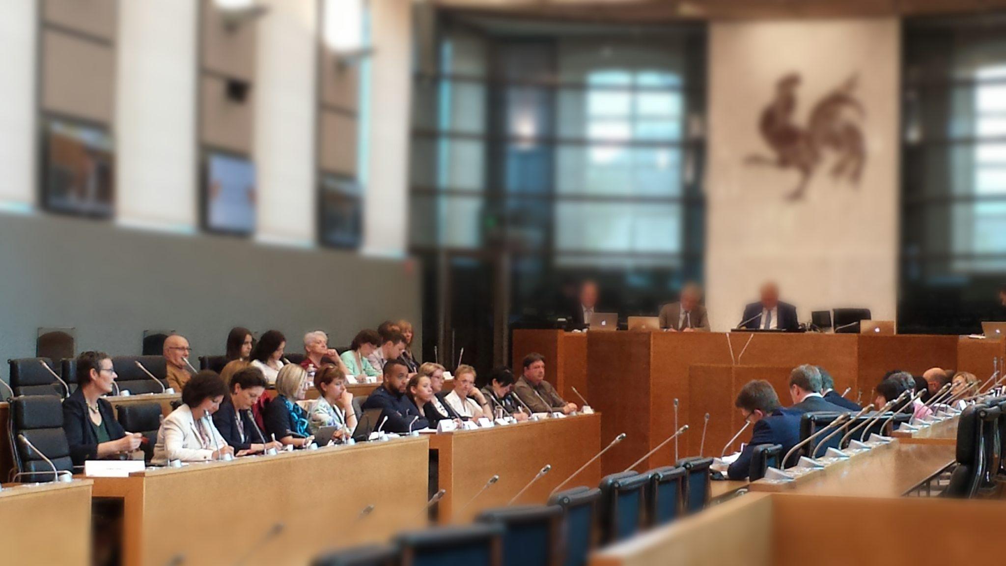 Conclusion du panel citoyen Parlement de Wallonie Ecolo Hazee Ryckmans_4