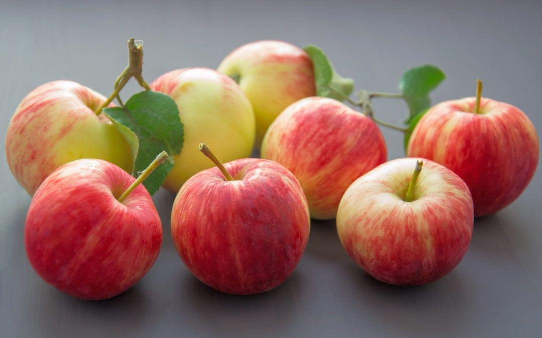 «Programme Fruits et Légumes à l'école»: pour Ecolo il est urgentissime de faciliter les démarches administratives