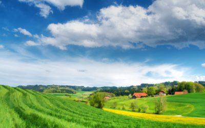 Le Parlement rate l'occasion d'avancer plus vite et mieux vers la transition agroécologique en Wallonie