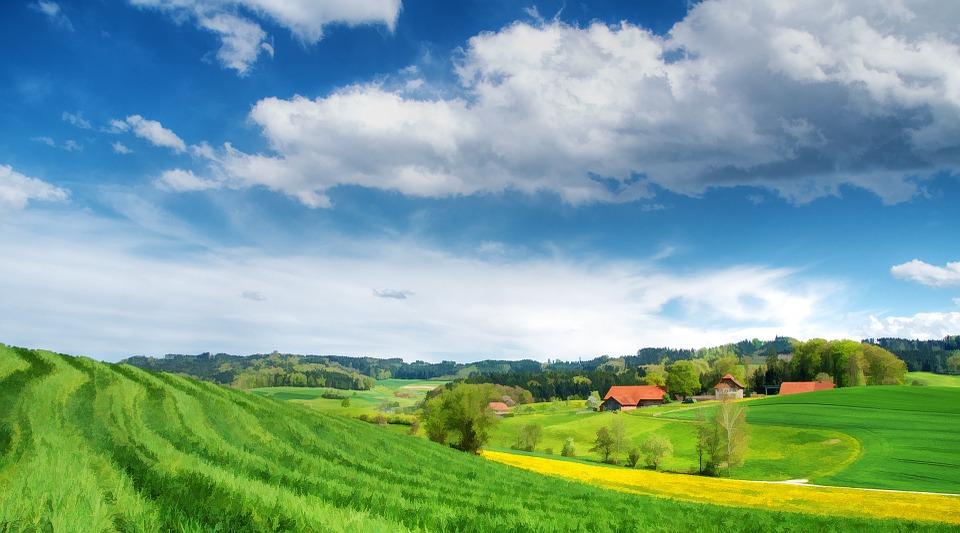 Schéma de développement territorial et réseau écologique wallon: Participez aux deux enquêtes publiques jusqu'au 5 décembre