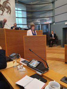 Valérie Delporte, nouvelle députée Ecolo, interrogeant le Ministre de l'Environnement sur les perturbateurs endocriniens.