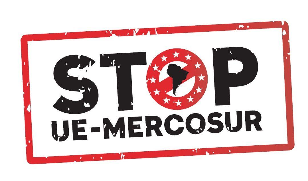 Mercosur: Ecolo avait sonné l'alerte, le Parlement de Wallonie dit unanimement NON